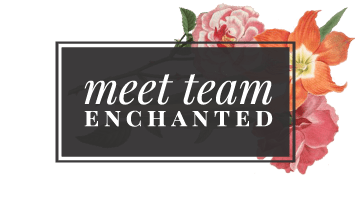 ef_web_sq_team